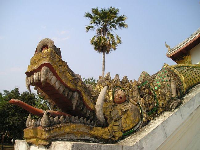 Крокодил рептиль на входе храма в Лаосе